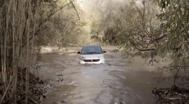 smart car not good in water