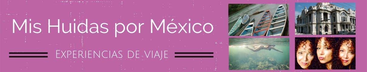 Mis Huidas por México
