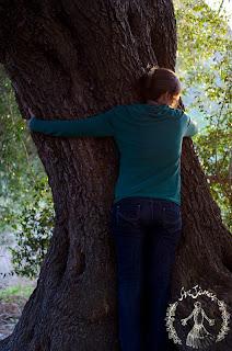 abbraccio albero