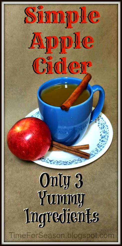 http://timeforseason.blogspot.com/2014/09/three-ingredient-apple-cider-recipe.html