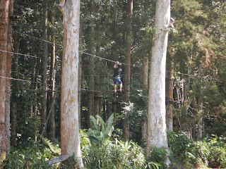 Treetop Game Bedugul