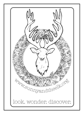 Sunny and the Elk Coloring Page!