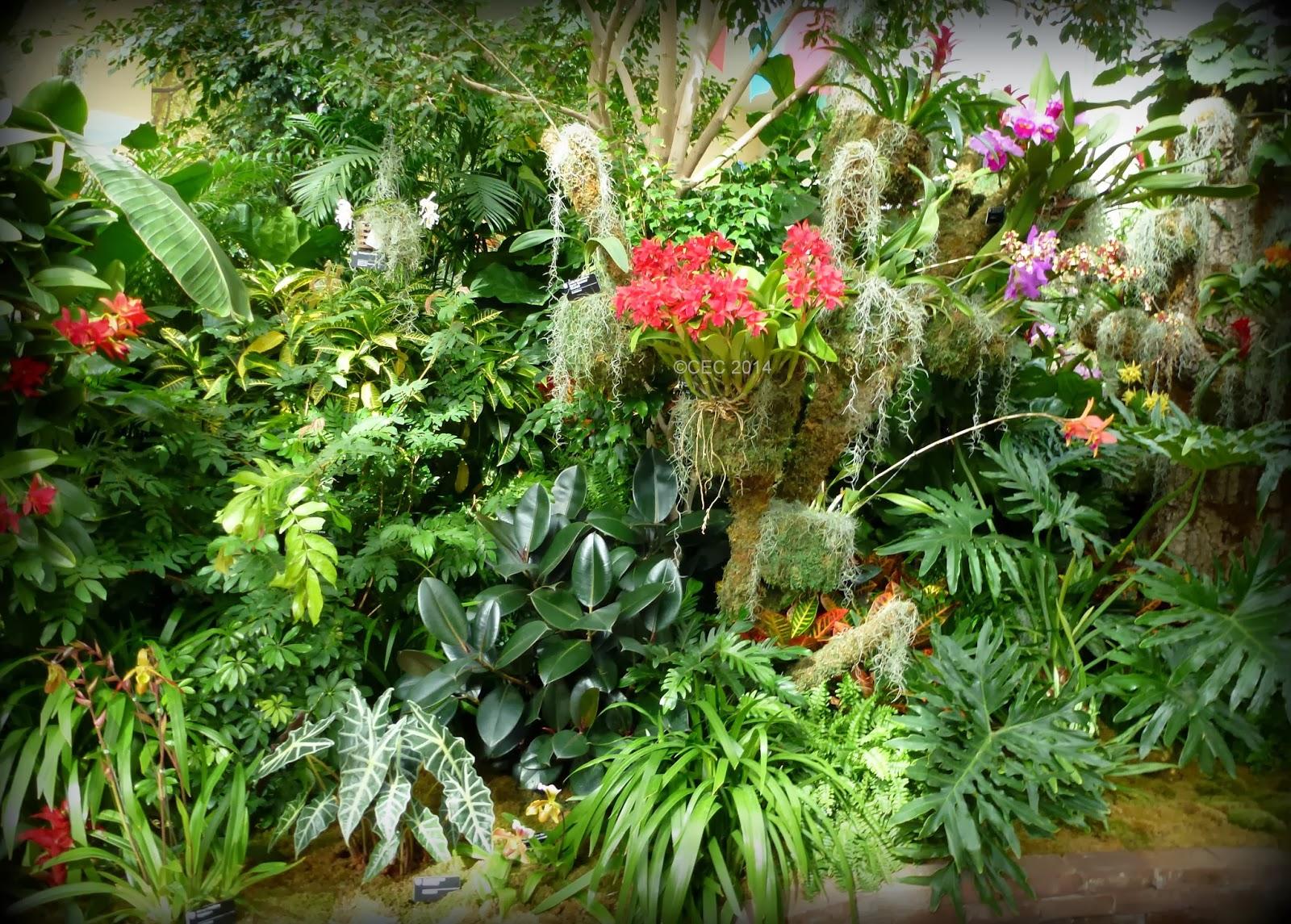 burke u0027s backyard dennis hundscheidt u0027s garden youtube for my