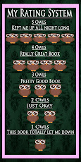 How I Rate Books
