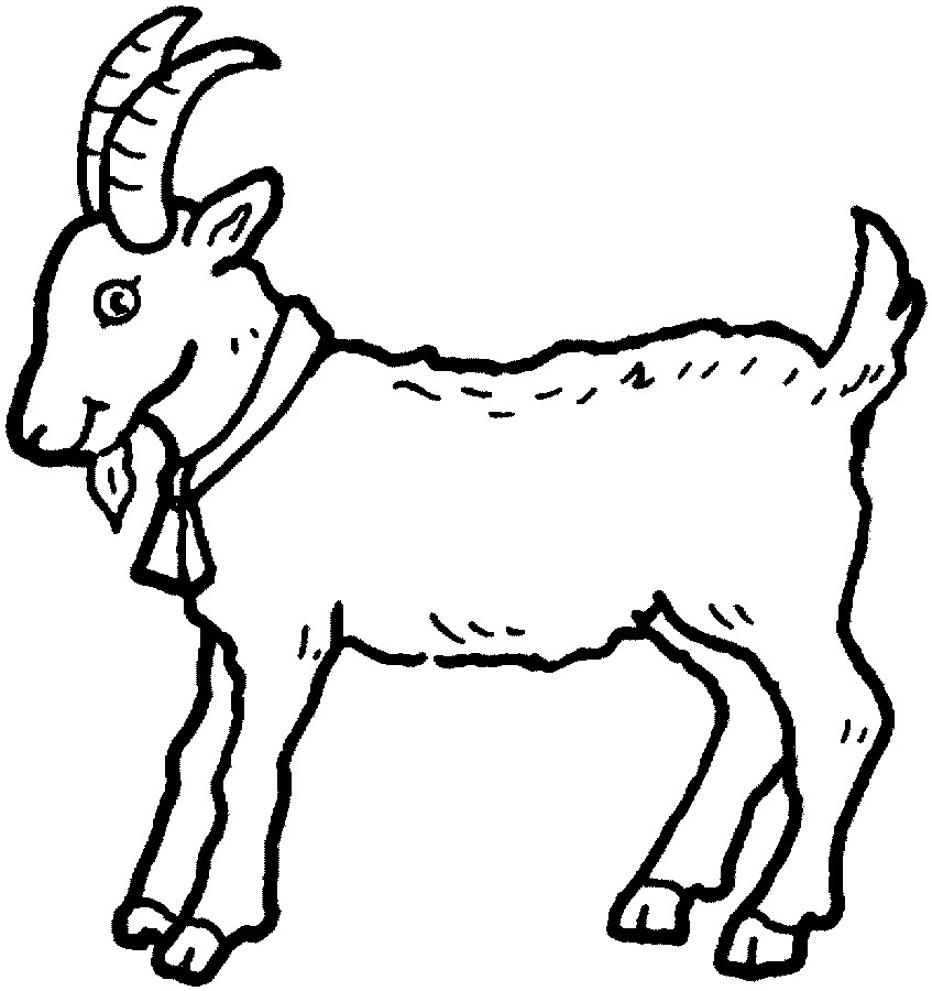 goat coloring picture
