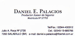 DANIEL PALACIOS SEGUROS