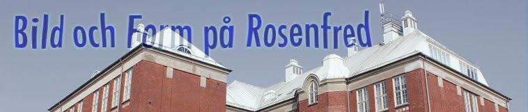 Bild och Form på Rosenfredsskolan