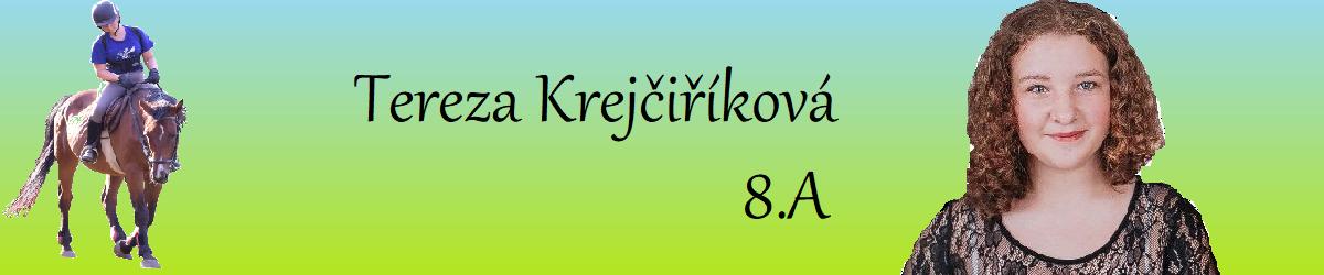 Tereza Krejčiříková INFORMATIKA
