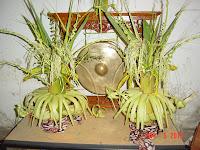 http://sewa-rentalmobilpengantindibandung.blogspot.com/