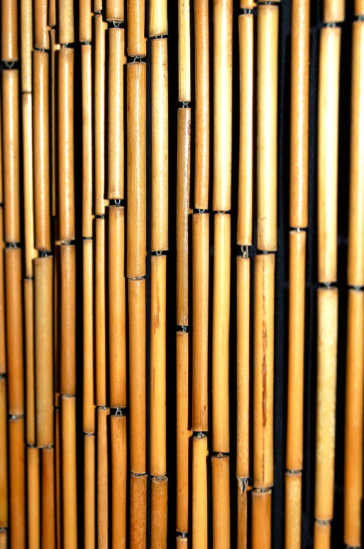 Bamboo Door Beads Craft Photo