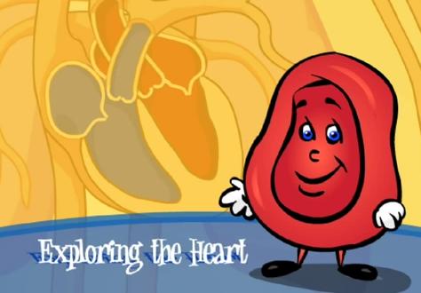 Heart Video