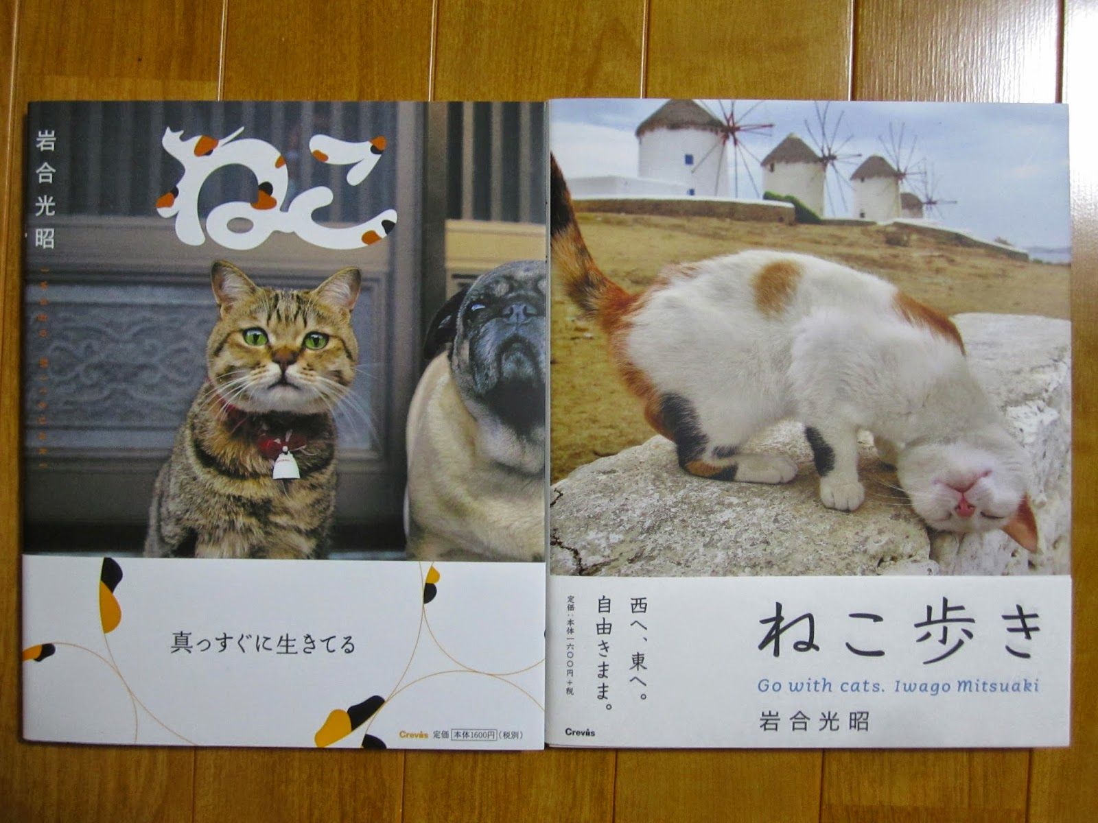 Photo Books Neko and Neko Aruki (Go with cats) by Iwago Mitsuaki 岩合光昭写真集 ねこ ねこ歩き
