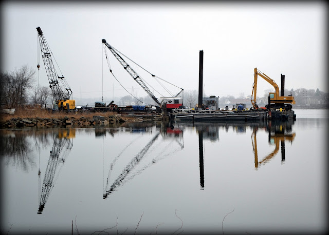 Cranes, north river, salem, massachusetts, reflection, mirror, favorite