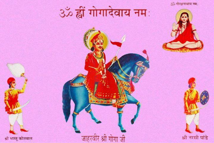 Image result for jaharveer goga ji nishan