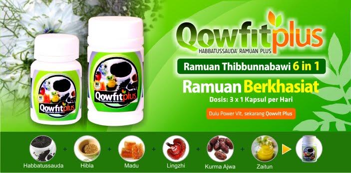 Ramuan Thibbunnabawi 6 in 1. Habbatussauda (Nigella Sativa), Hilba (Fenugreek), Korma Ajwa (Korma Nabi), Madu, Zaitun, ekstrak Jamur Lingzhi, Kurma 'Ajwa.