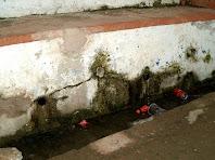 Imatge dels brocs de la Font del Prat