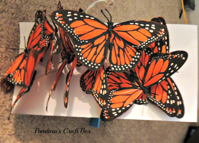 real butterfly, butterflies, glass dome, butterfly art, butterflies art, butterfly collection, butterfly gifts, acrylic tube, moss, moth crystals