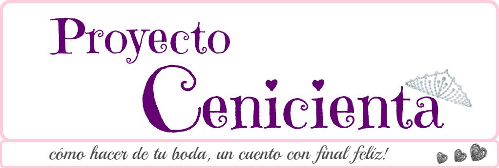 Proyecto Cenicienta