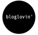 følg meg på blog lovin