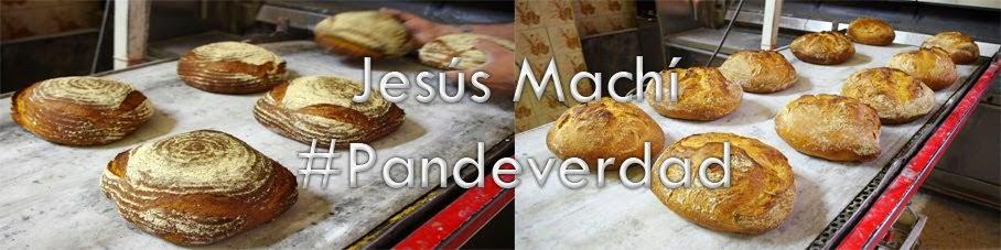 Jesús Machi