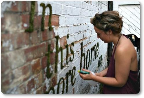 moss graffiti, mossgraffiti
