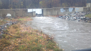 high water in a creek during hurricane sandy