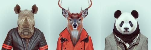 05-Artist-YAGO-PARTAL-Clothed-Animals-Rhino-Deer-Panda
