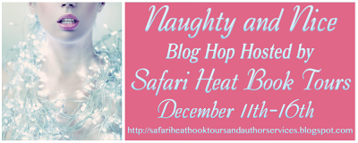 Naughty & Nice Blog Hop!