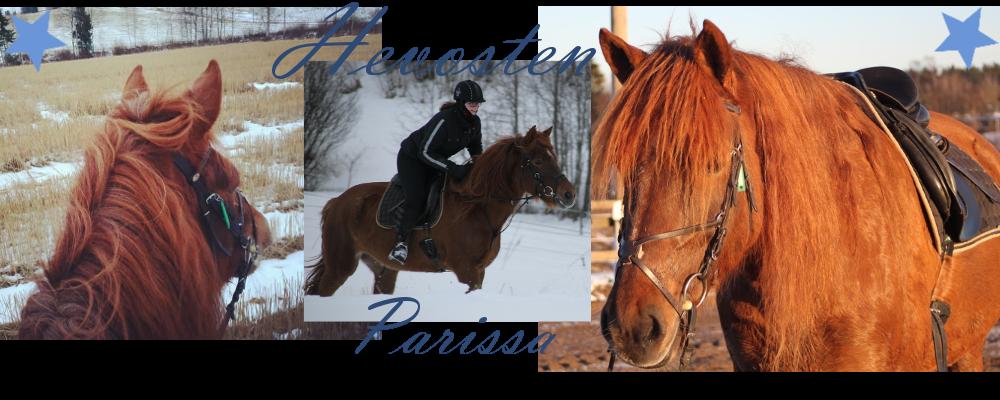Hevosten parissa