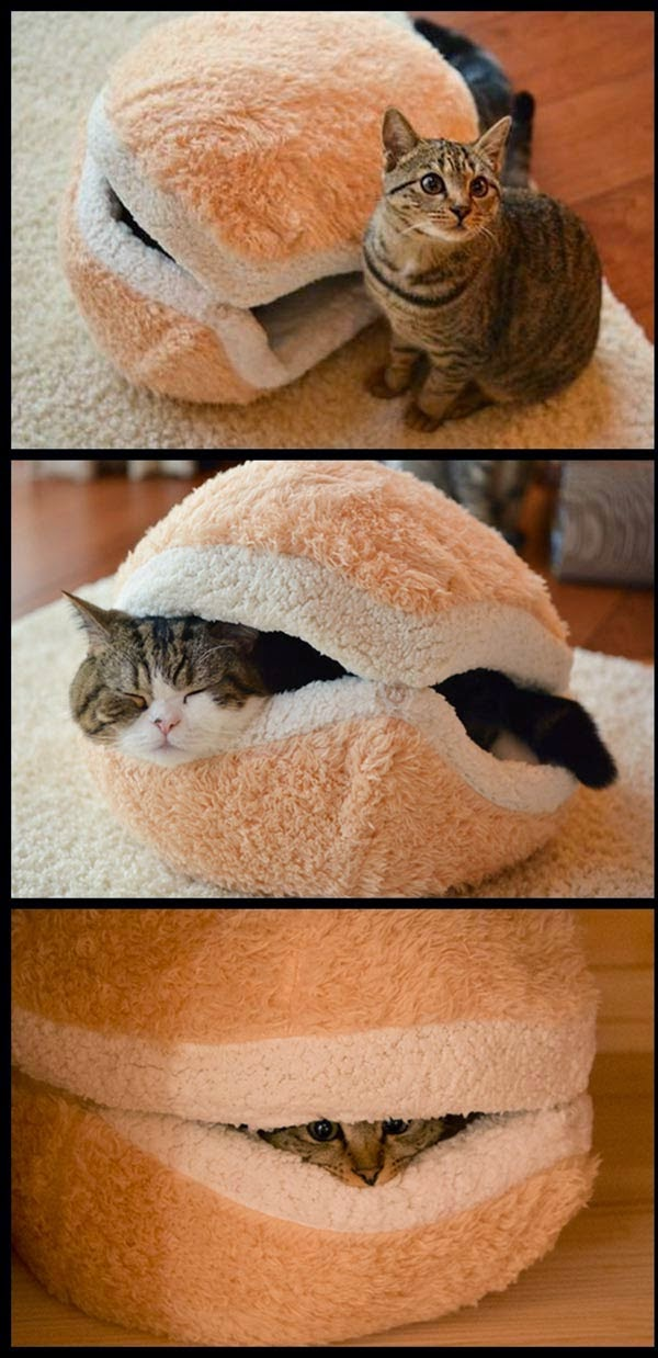 CUTE MACARON SHAPED CAT PILLOW 9 images