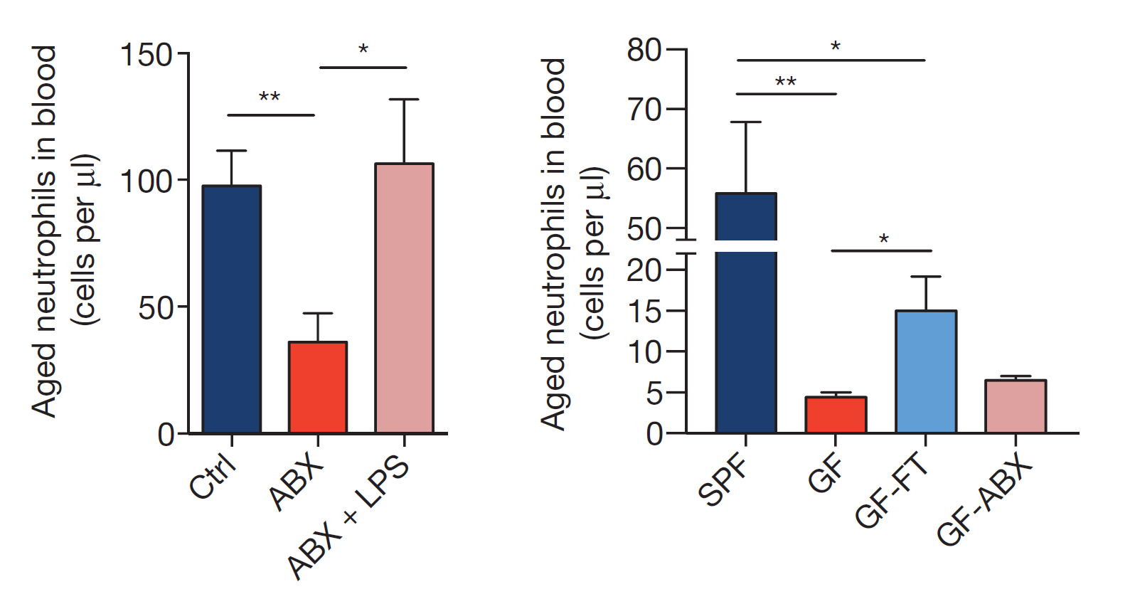 Gut microbiota controls clinical severity of sickle cell disease next the authors showed that germ free mice or antibiotic treated mice have reduced number of ageing neutrophils pooptronica