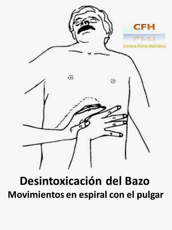 Desintoxicación del Bazo - CENTRO FÉNIX