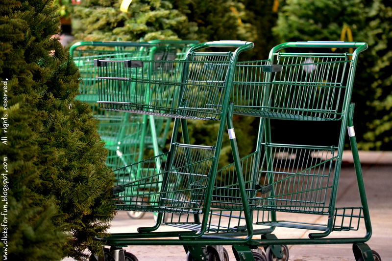christmas shopping malls carts empty trees gifts photoblogging