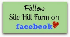 https://www.facebook.com/SiloHillFarmCreates?ref=hl