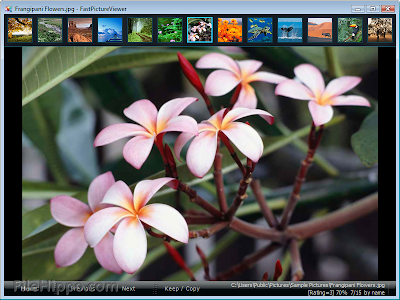 FastPictureViewer 1.9 Build 299 Free Download