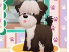 Köpek Kuaförü Oyunu