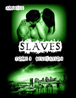 http://lachroniquedespassions.blogspot.fr/2015/02/slaves-tome-3-revelation-amheliie.html