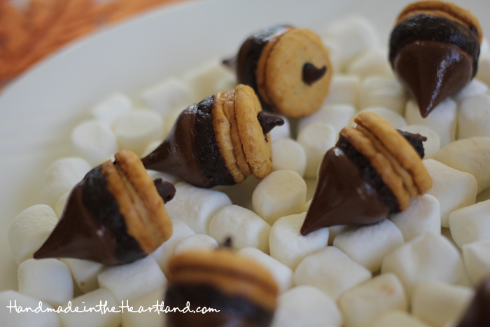 Cookie & Candy Acorns