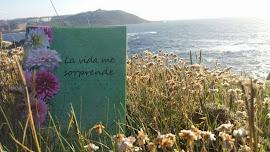 Mi Libro de Poesías