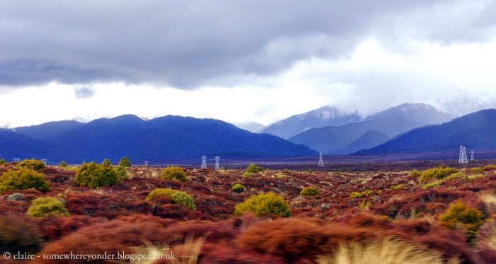 taken from a moving car driving between Hamilton and Wellington, early winter