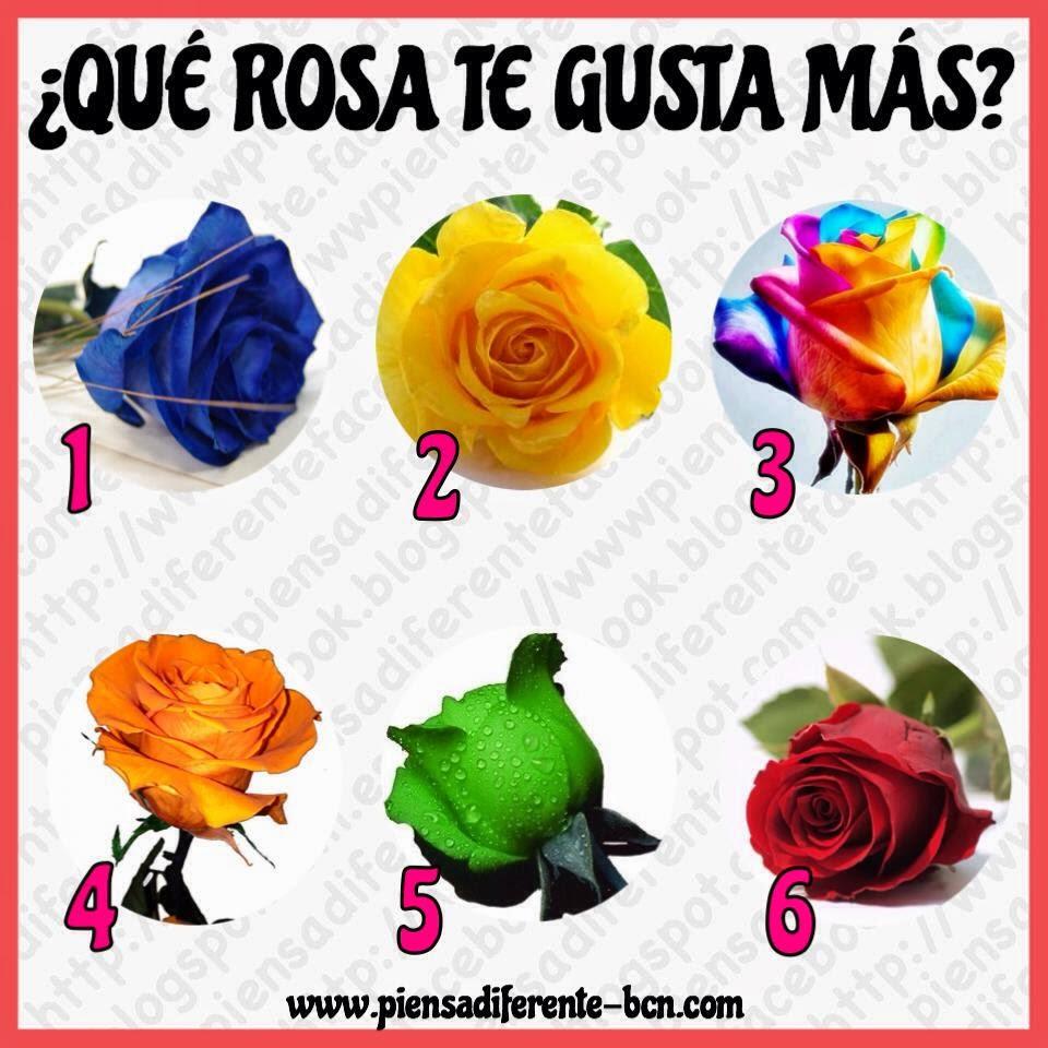 Piensa diferente el test de las rosas - Significado colores de las rosas ...