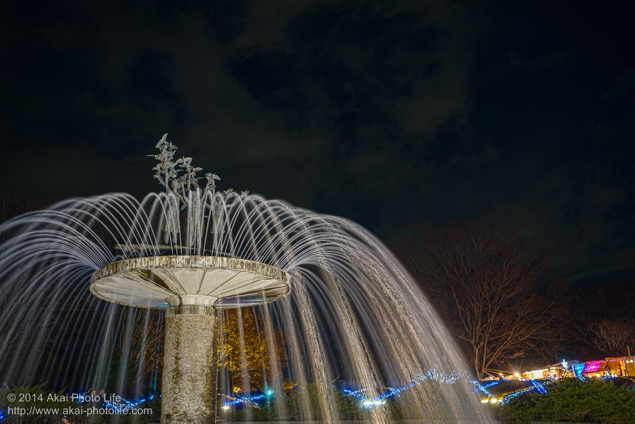 国営昭和記念公園のイルミネーション(噴水)