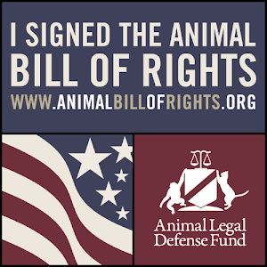 animal bill of rights The animal rights movement, by contrast, invariably takes the opposite tack — either reducing us to the level of animals or attempting to raise them up to ours both should be resisted.