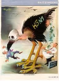 Flu Burung Pada Kucing Persia Anggora
