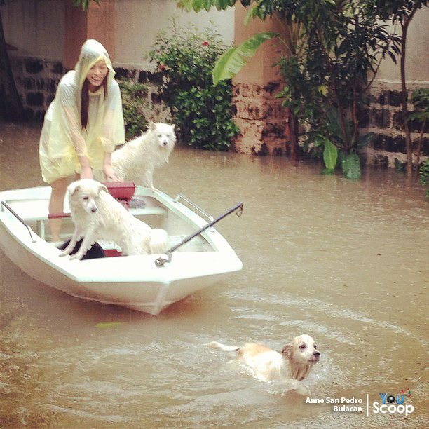 Philippine Viral News And Videos Home: Viral Cool And Funny Pics About The Recent Floods In The