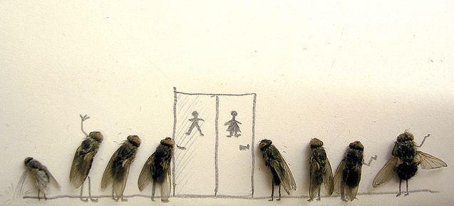 Karya Seni Dari Lalat Mati Yang Unik ! [ http://www.asalasah.net/2013/03/foto-foto-unik-karya-seni-dari-lalat.html ]