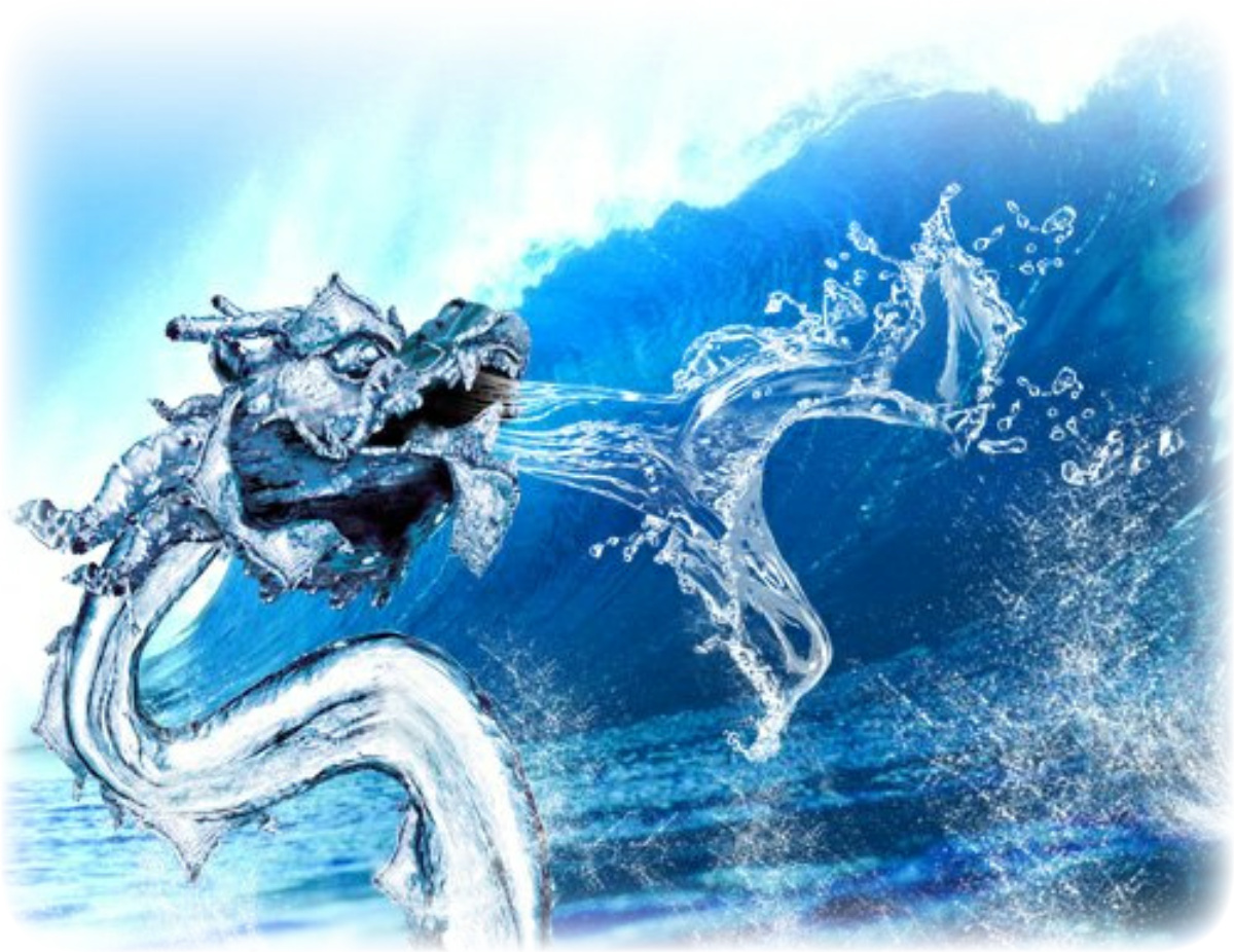 from these hands...: Year of the Dragon 2012
