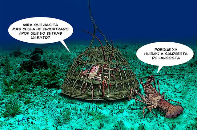 imagenes graciosas de pesca para whatsapp Resultados