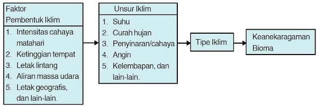 Mekanisme pembentukan keanekaragaman ekosistem.
