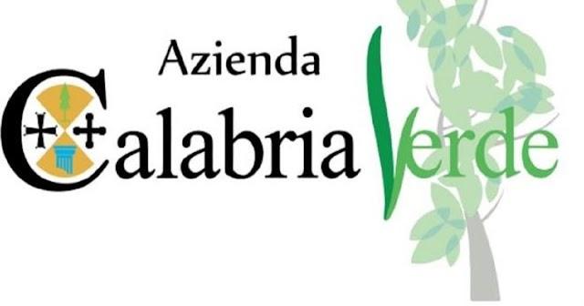 "CALABRIA VERDE, COMMISSARIO OLIVA: ""GIA' PIENAMENTE OPERATIVI NELLA CAMPAGNA ANTINCENDIO 2021"""
